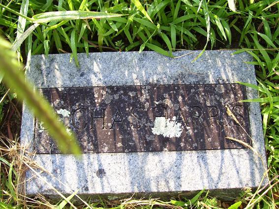 http://usgwarchives.net/ok/muskogee/cemeteries/tombstones/brusheymountcem/chasharris.jpg