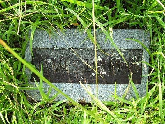 http://usgwarchives.net/ok/muskogee/cemeteries/tombstones/brusheymountcem/jamesharris.jpg