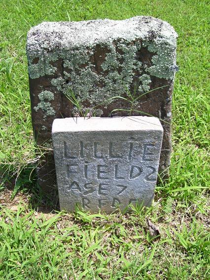 http://usgwarchives.net/ok/muskogee/cemeteries/tombstones/brusheymountcem/lilliefields.jpg