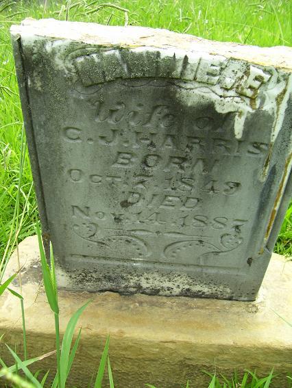 http://usgwarchives.net/ok/muskogee/cemeteries/tombstones/brusheymountcem/nannieeharris.jpg