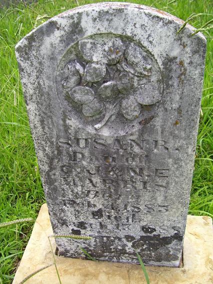 http://usgwarchives.net/ok/muskogee/cemeteries/tombstones/brusheymountcem/susanharris.jpg